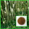 100% Natural High quality Black Cohosh Extract powder/Triterpenoid Saponins 2.5%,5%,8%