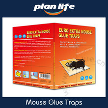 Buy Online Rat Glue Trap With Good Quality And Reasonable Price