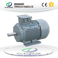 Y2 Series Three Phase Induction Motors with copper wire