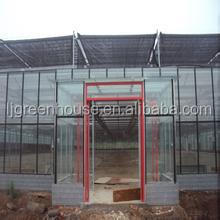 industrial Growing system float glass greenhouse for plant