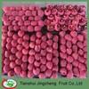 Hot-sell Tianshui fresh huaniu apple