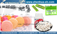 ZH chewing gum Manufacturing machinery