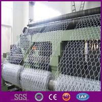 Double twist hexagonal wire mesh machine/(2x50m) hexagonal wire mesh manufacturer/tree guard hexagonal wire mesh