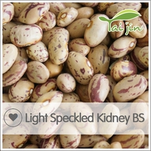 New Crop Long Shape Kidney Beans,Dry Pinto Bean Seed