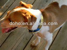 Newly designing & Big discount dog recording tag -- DH 12005