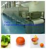 Industrial conveyor belt type fruits and vegetables dehydrator machine