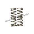 alta qualidade do molde da bobina espiral mola de compressão