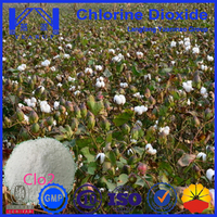 Agriculture Bumper Chlorine Dioxide Tablets with Low Price and Top Quality