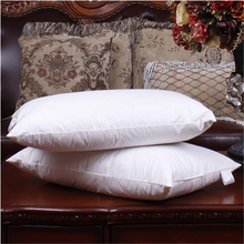 down pillow with accessory