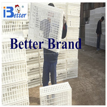 BETTER BRAND direct supply poultry transport cage ,transport chicken cage