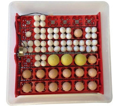 multifunctional holding 36/72 poultry eggs mini egg incubator for bird, chicken, duck eggs at the same time