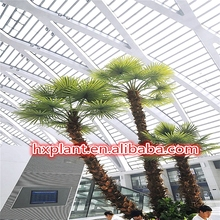 Made in China 2015 Hot sale big size dec indoor & outdoor artificial date palm tree