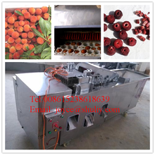 best quality 304 ss bayberry pitting machine / 2015 new apricot pit remove machine