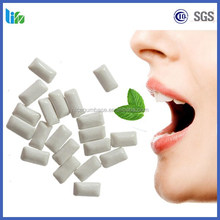 OEM sugar free chewing gum with fruit mint