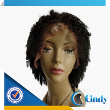 fast shipping 6-36inch accept paypal afro curly wet and wavy indian remy full lace wig manufacturer
