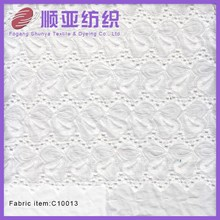 China new popular white cotton lace embroidery fabric