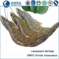 Live Frozen Fresh Vannamei Shrimps