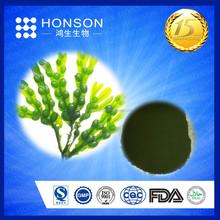 ISO HALAL Natural Fucoidan, Brown Seaweed Extract