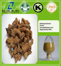 100% Natural Galangal Extract ,Galangal Extract Powder,Galangal Extract Supplier 4:1~20:1