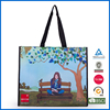 Eco-friendly pp non woven shopping bag
