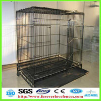 high quality cat cage (Anping factory, China)