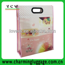 fair trade shopping bag/pictures printing non woven shopping bag/boutique shopping bags