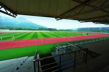 Pasto sintético para chanchas de futbolito/ fútbol 7/ fútbol 5 o minifútbol