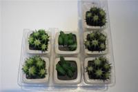 brand name artificial bonsai plants artificial tiny desk decor bonsai