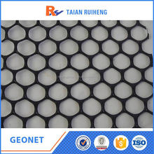 Hot Sale!!! Synthetics Geonet Factory Price