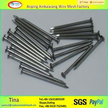 Factory 2'' galvanized concrete nails ,common nails for sale ,large steel nails