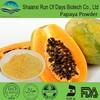 Organic sugar free drink making papaya juice powder