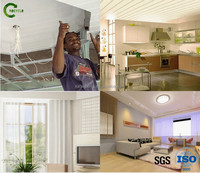 Building Material of PVC panels for interior decoration