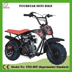 80CC Mini Bike/Motorcycle for Teenager FSD80P