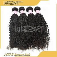 100% unprocessed human virgin hair kinky curly true glory Brazilian hair