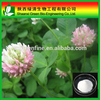 Best Selling Natural Formononetin Extract/red Clover Extract_formononetin_485-72-3 / Organic Red Clover Extract