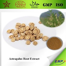 GMP&Kosher 100% Natural astragalus root extract powder Astragaloside IV