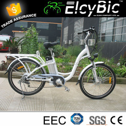 new model 36 volt lithium ion battery for electric bicycle(E-TDF038XB)