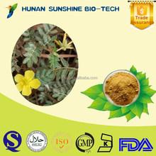 Excellent Price And High Quality Brown Yellow Powder Tribulus Saponins Herb Tribulus Terrestris Powder