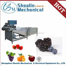 New Style industrial fruit and vegetable cleaning washing double bubble washer machine with best service