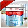 Caboli paint on concrete interior nano coating