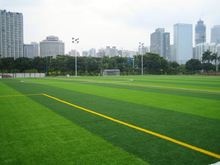 Feels like Real Grass. Artificial Turf for Lawns, exhibition hall and streets- Lowest Prices