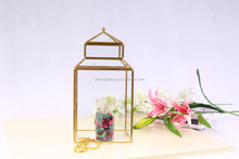 Clear Glass plant outdoor decoration