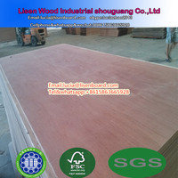 28mm (19-23 layers) waterproof container plywood flooring for Singapore Market