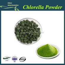 100% Natural chlorella / Chlorella (Broken Cell Wall) powder / tablet /capsule