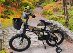 zhengyu/ freestyle kids gas dirt bike/children bicycle for sale/kids bicycle pictures