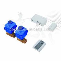 wireless water leak alarm for leak alarm system with brass valve