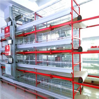 Best selling design chicken wholesalers in johannesburg