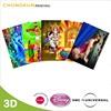 Custom 3D Lenticular Picture