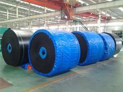 conveyor belt for anto manure removal system