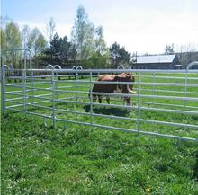Anping Xiangming Company Horse Panel